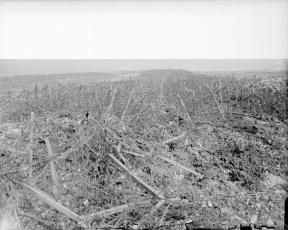 Battles of Arras. Part of the broad wire entanglement in front of the Hindenburg Line. Near Heninel, 3 May 1917.